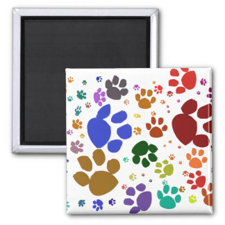 colorful cat paws square magnet