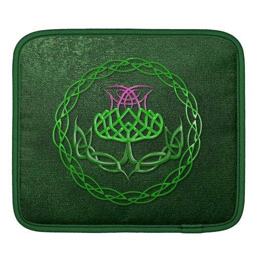 symbol of scotland the guardian thistle in a celtic knot design