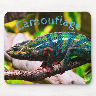 Colorful Chameleon Mouse Mat