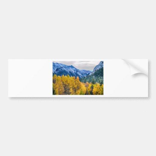 Colorful Crested Butte Colorado Bumper Sticker