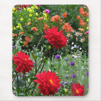 Colorful Dahlia Flower Garden Mousepad