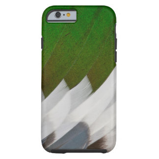 Colorful Duck Feather Abstract Tough iPhone 6 Case