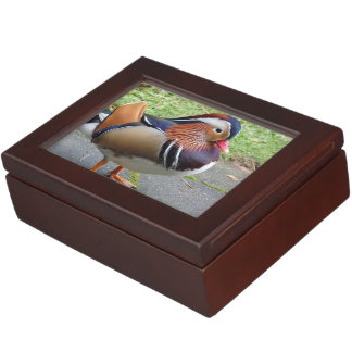 Colorful Duck Memory Boxes