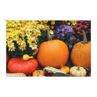 Colorful fall decorative pumpkin display gallery wrapped canvas