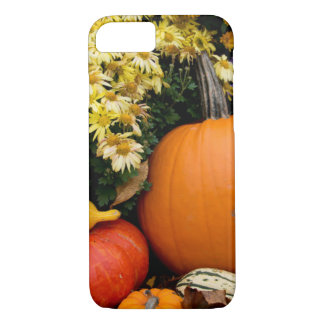 Colorful fall decorative pumpkin display iPhone 8/7 case