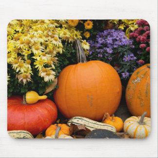 Colorful fall decorative pumpkin display mouse mat