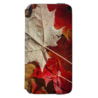 Colorful Fall Maple Leaves Floating Incipio Watson™ iPhone 6 Wallet Case