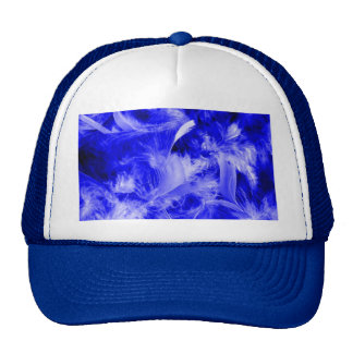 Colorful feathers,blue hats
