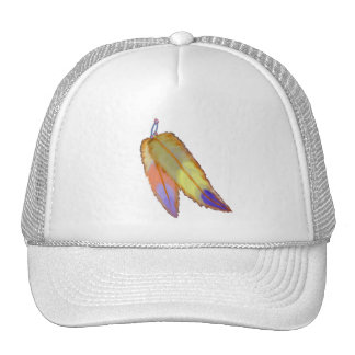 Colorful feathers Hat