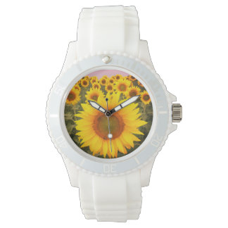 Colorful Floral Yellow Sunflowers Harvest Watch
