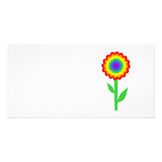 Colorful flower in rainbow colors. card