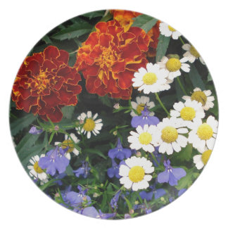 Colorful Flowerbed Plate