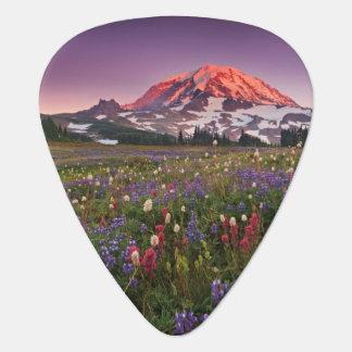 Colorful Flowers in Rainier National Park Guitar Pick