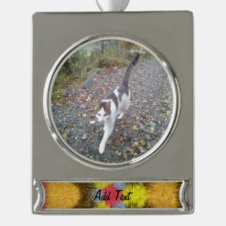 Colorful furry kaleidoscope silver plated banner ornament