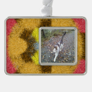 Colorful furry kaleidoscope silver plated framed ornament