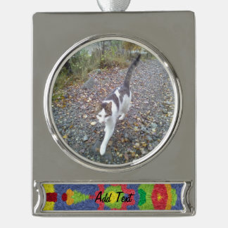 Colorful furry pattern silver plated banner ornament