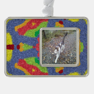 Colorful furry pattern silver plated framed ornament