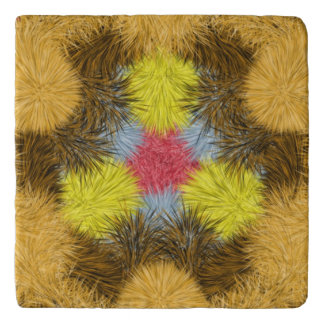 Colorful furry unique kaleidoscope trivet