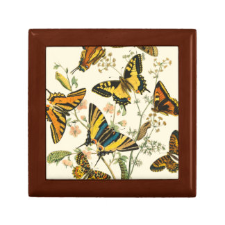 Colorful Gathering of Butterflies and Caterpillars Jewelry Boxes