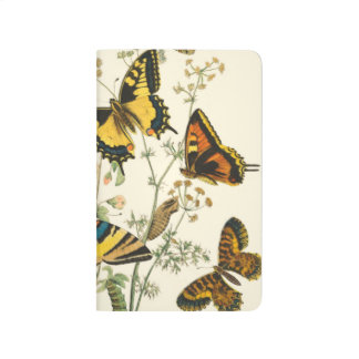 Colorful Gathering of Butterflies and Caterpillars Journal