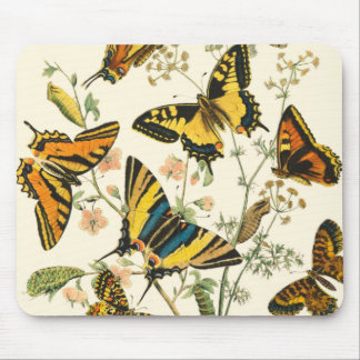 Colorful Gathering of Butterflies and Caterpillars Mouse Mat