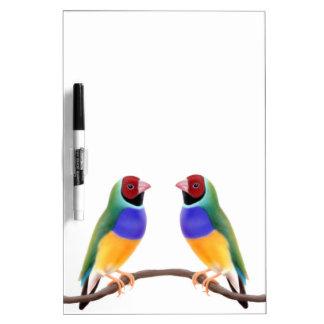 Colorful Gouldian Finch Birds Dry Erase Board