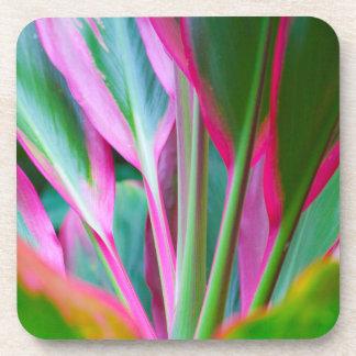 Colorful Hawaiian Plant Hard Plastic Coasters