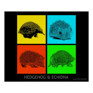 Colorful Hedgehog and Echidna Poster