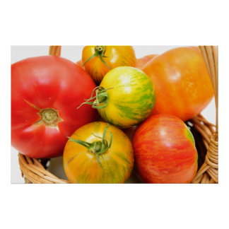 Colorful Heirloom Tomatoes Poster