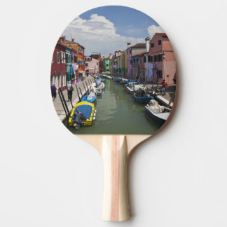 Colorful homes along canal on the island of ping pong paddle