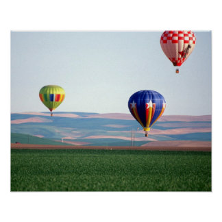 Colorful hot air balloons float over wheat poster