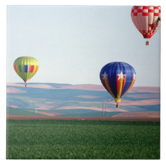 Colorful hot air balloons float over wheat tile