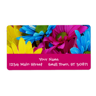 Colorful Hot Pink Teal Blue Gerber Daisies Flowers