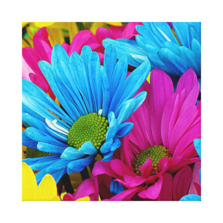 Colorful Hot Pink Teal Blue Gerber Daisies Flowers Canvas Print