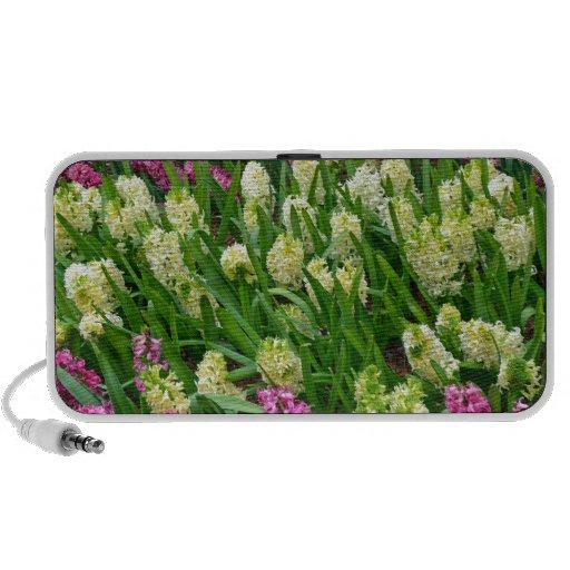 Colorful hyacinth flower garden notebook speakers