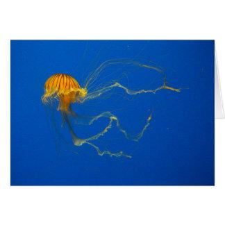 Colorful Jellyfish Card