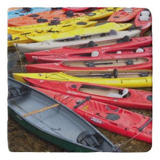 colorful Kayaks Trivet