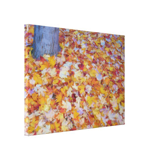 Colorful Leaves of Autumn Gallery Wrap Canvas