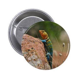 Colorful Lizard 6 Cm Round Badge