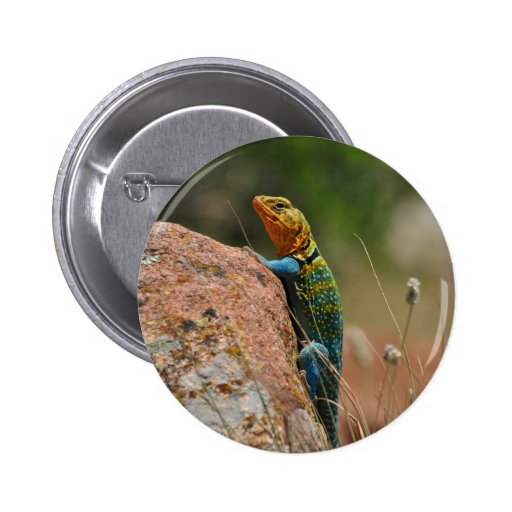 Colorful Lizard Pinback Button