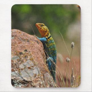 Colorful Lizard Mousepads