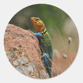 Colorful Lizard Round Sticker