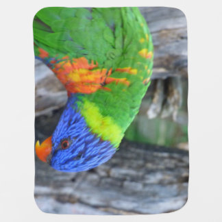 Colorful Lorikeet Baby Blanket