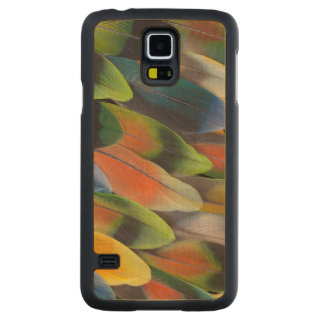 Colorful Lovebird Feather Design Carved Maple Galaxy S5 Case