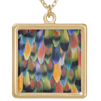 Colorful lovebird parrot feathers gold plated necklace