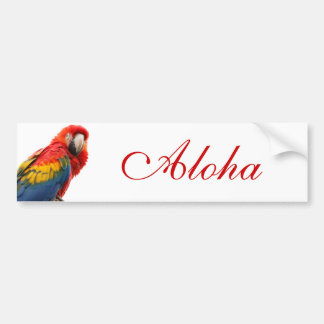 Colorful Macaw Chic Classy Mod Tropical Car Bumper Sticker