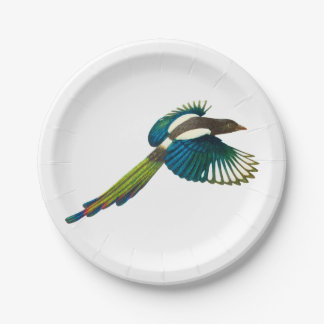 Colorful Magpie Bird, Vintage Illustration 7 Inch Paper Plate