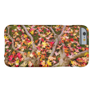 Colorful Maple Leaf Barely There iPhone 6 Case