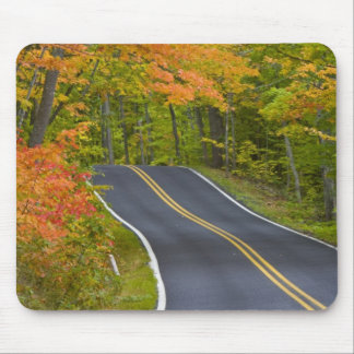 Colorful maple trees in autumn line scenic mouse mat
