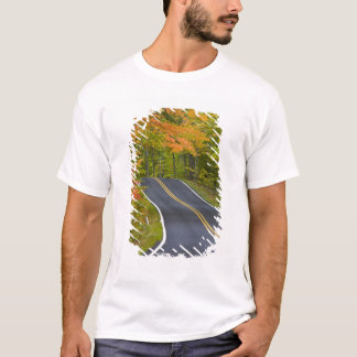 Colorful maple trees in autumn line scenic T-Shirt